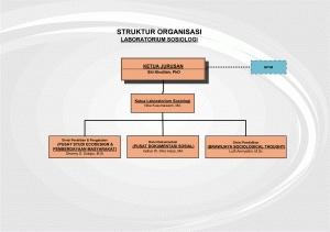 struktur lab